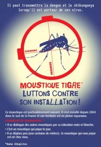 moustique-affiche-1